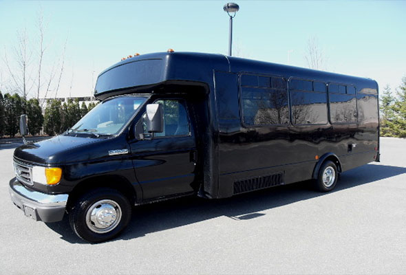 18 Passenger Party Buses chicago