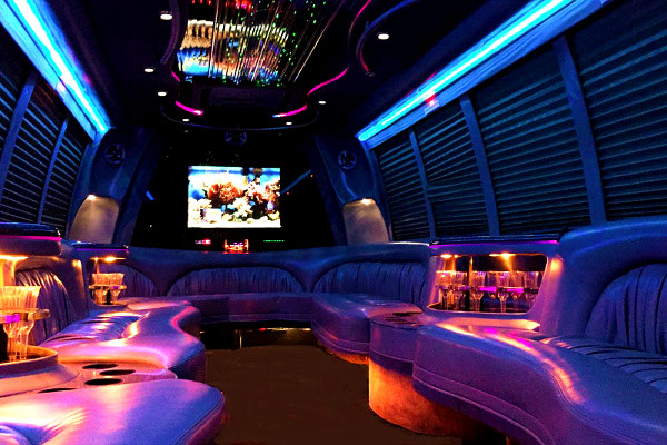 chicago 18 Passenger Party Bus